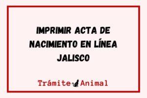 Acta de nacimiento en Jalisco Imprimir