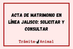 Acta de matrimonio en Jalisco