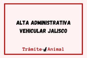 Alta Vehicular Jalisco
