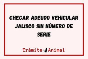 Checar Adeudo Vehicular en Jalisco sin número de Serie