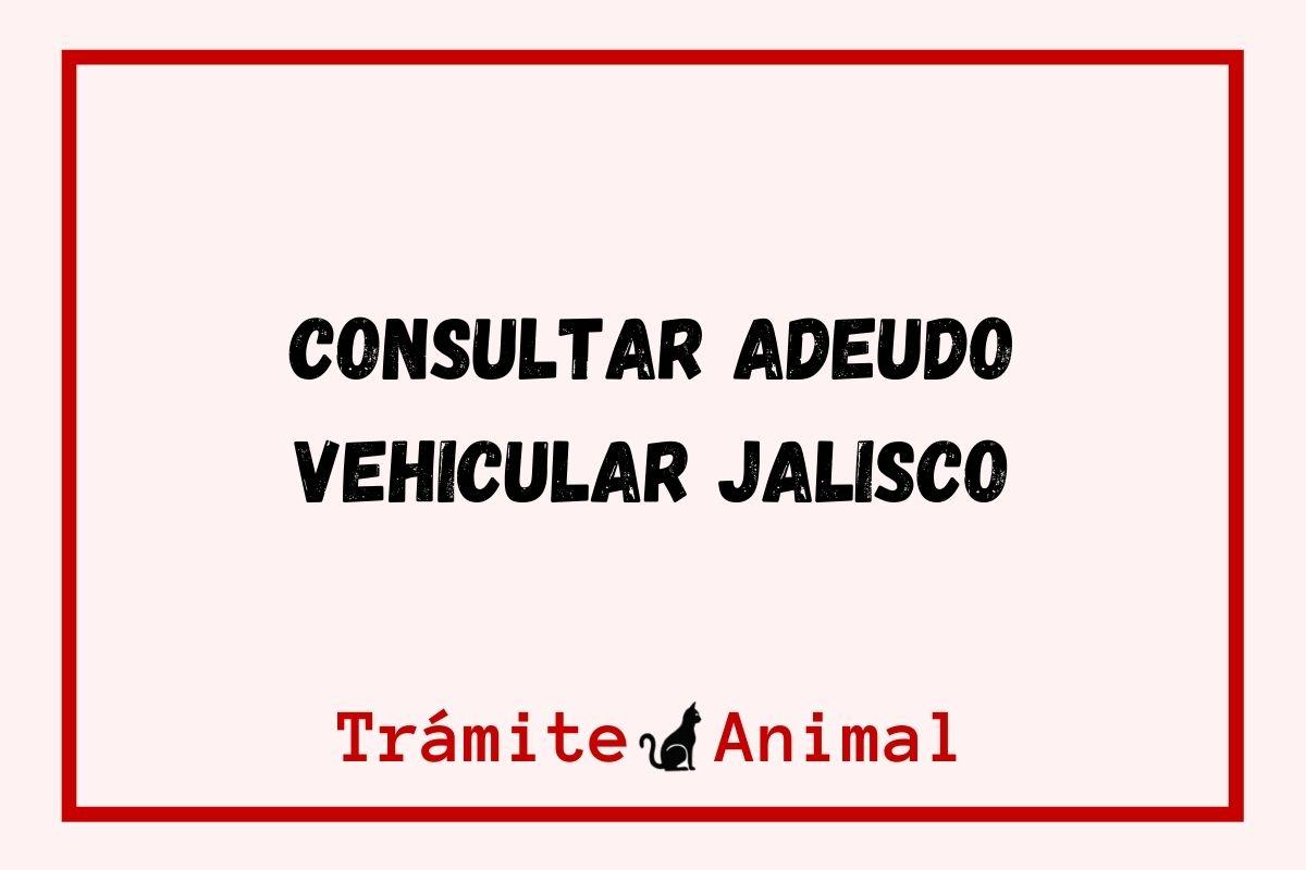 Consultar Adeudo Vehicular en Jalisco
