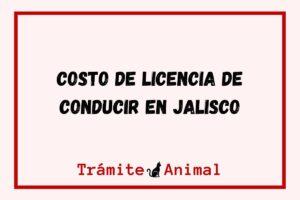 Costo Licencia de Conducir Jalisco