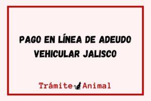 Pago en línea de Adeudo Vehicular Jalisco