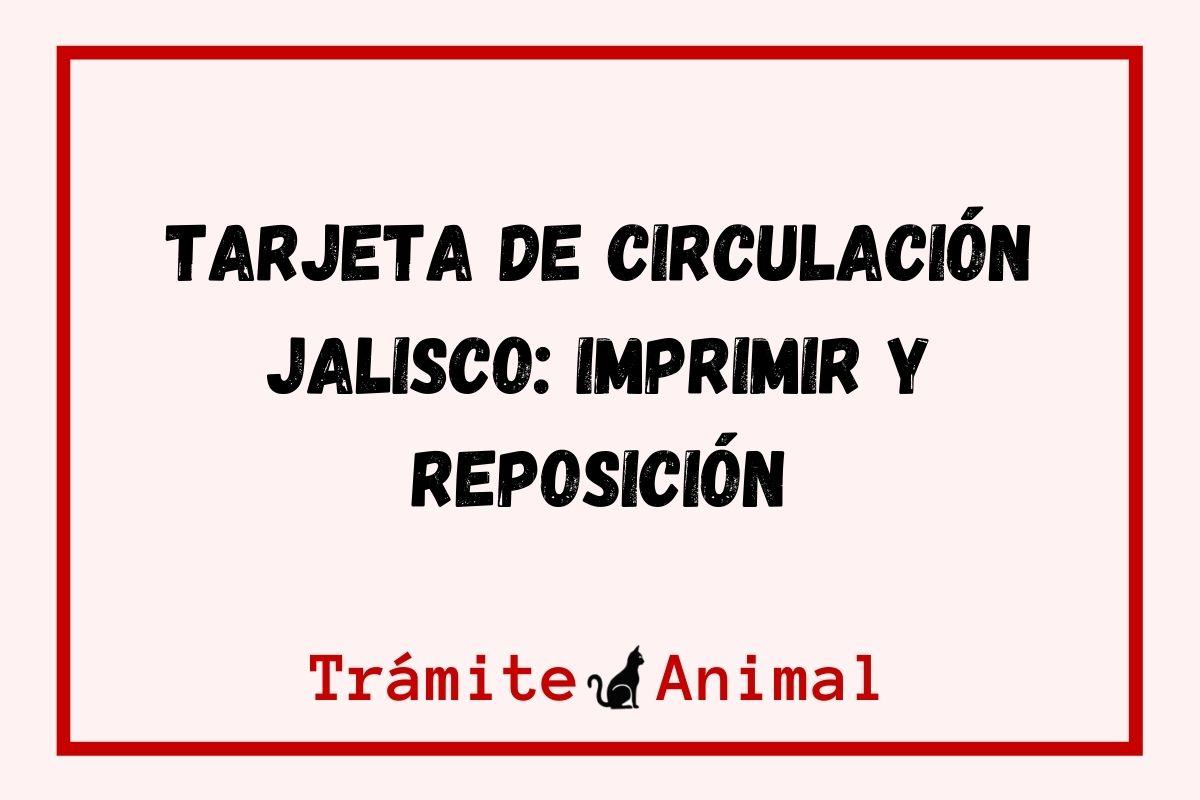 Imprimir Tarjeta de Circulación Jalisco