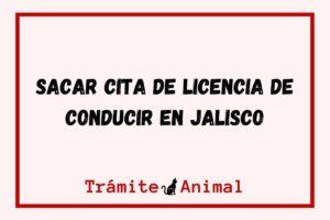 Sacar cita de licencia de conducir en Jalisco