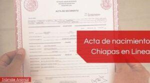 Descargar Acta de nacimiento Chiapas