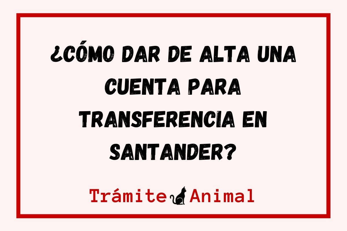 ¿Cómo dar de alta una cuenta para transferencia en Santander?
