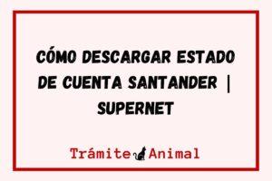 Cómo descargar Estado de cuenta Santander