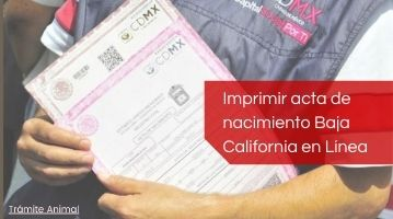 Cómo imprimir acta de nacimiento Baja California