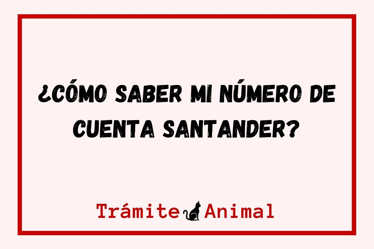 ¿Cómo saber mi número de cuenta Santander?