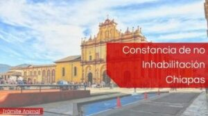 Constancia de no inhabilitacion Chiapas