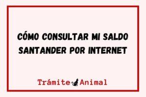 Consultar saldo Santander por Internet