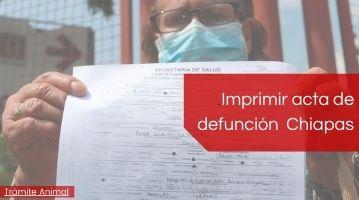 Imprimir acta de defunción Chiapas