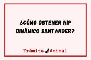 Cómo obtener NIP dinámico Santander