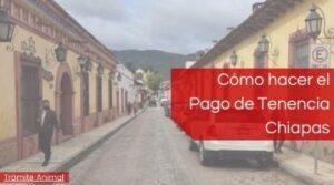 Pagar tenencia Vehicular Chiapas