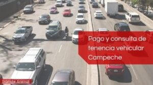 Pago tenencia Campeche