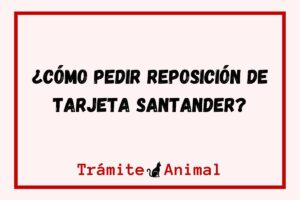 ¿Cómo pedir reposición de tarjeta Santander?
