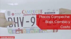 Placas Campeche