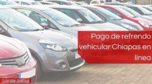 Pago de refrendo Vehicular Chiapas
