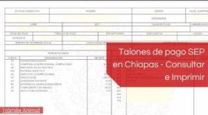 Talones de pago SEP Chiapas