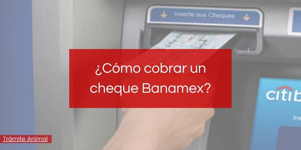 Cómo cobrar un cheque Banamex