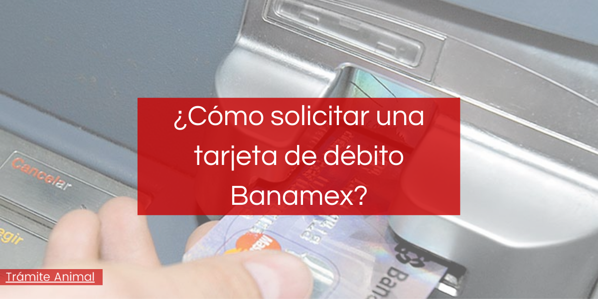 ¿Cómo solicitar una tarjeta de débito Banamex?