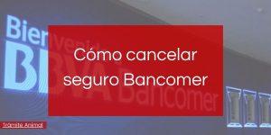 Cómo cancelar seguro Bancomer