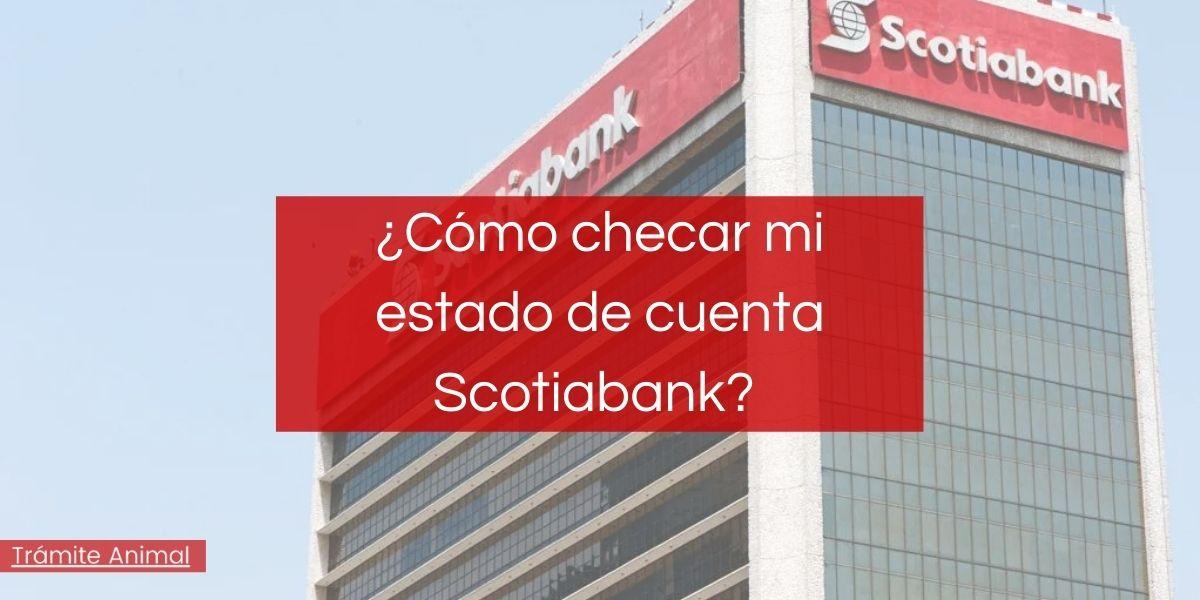 Cómo checar estado de cuenta Scotiabank