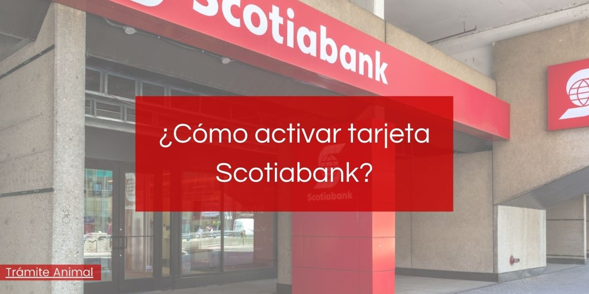 Cómo activar tarjeta Scotiabank