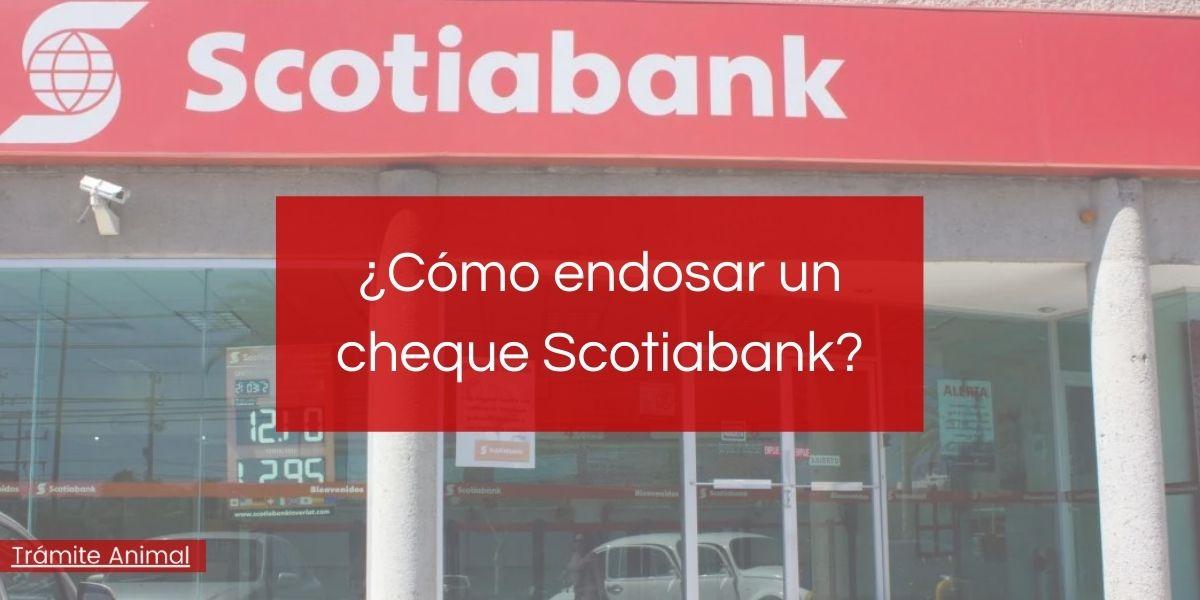 Cómo endosar un cheque Scotiabank