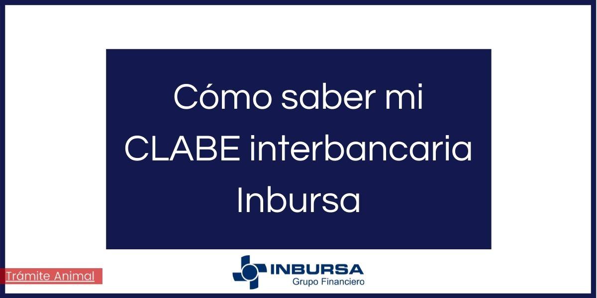 Cómo saber mi clabe interbancaria Inbursa
