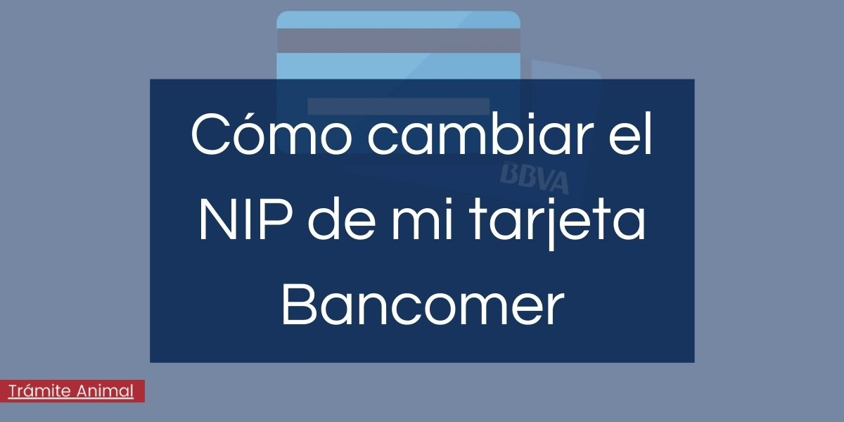 Cómo cambiar NIP tarjeta Bancomer