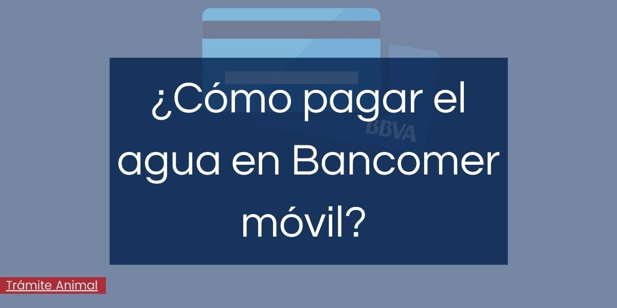 Cómo pagar agua en Bancomer Móvil