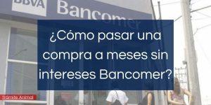 Cómo pasar una compra a meses sin intereses en Bancomer