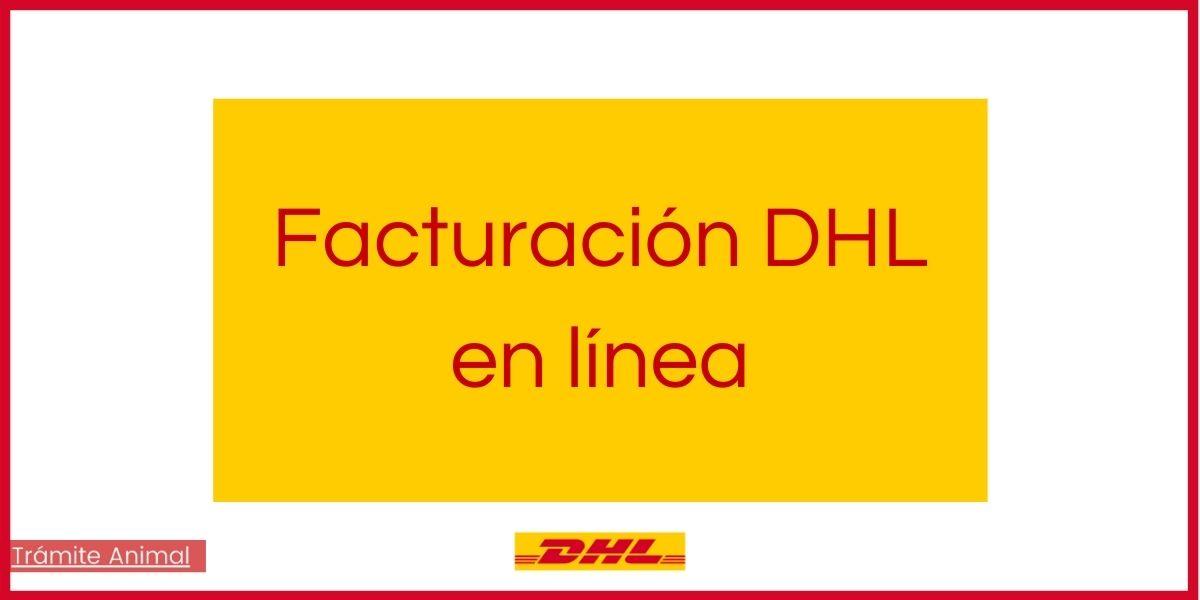 Facturación DHL en línea paso a paso