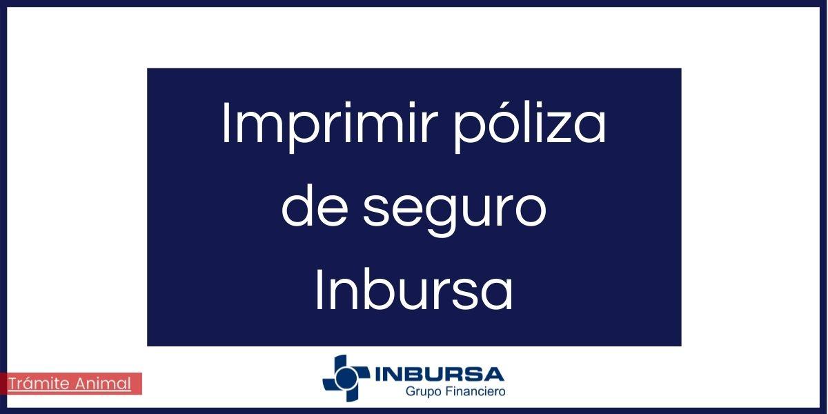 Cómo imprimir poliza de seguro Inbursa
