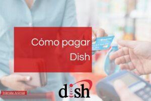 Cómo pagar Dish en línea