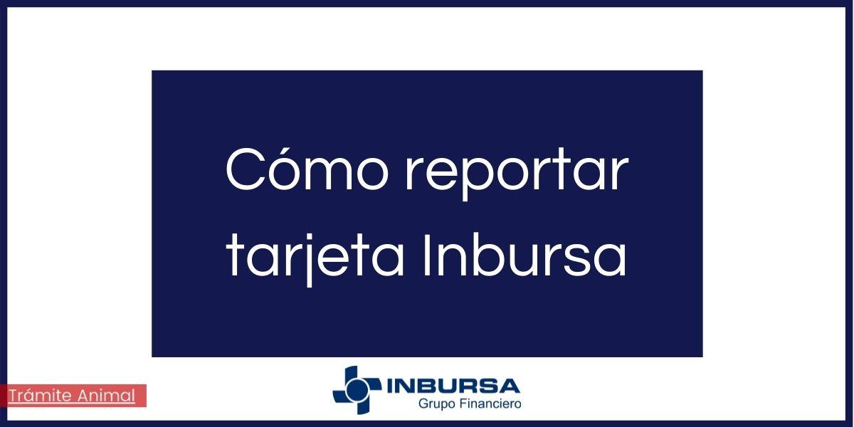 Cómo reportar tarjeta Inbursa por robo
