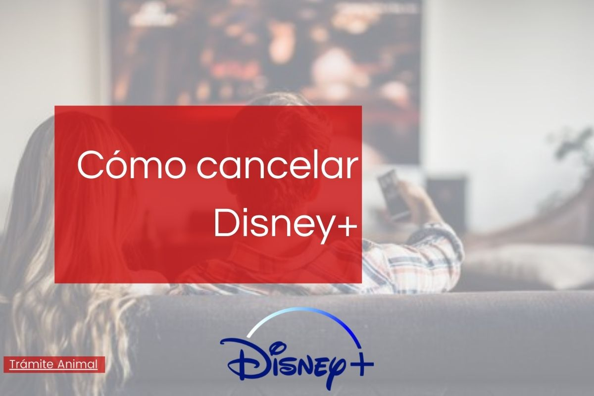 Cómo cancelar Disney Plus