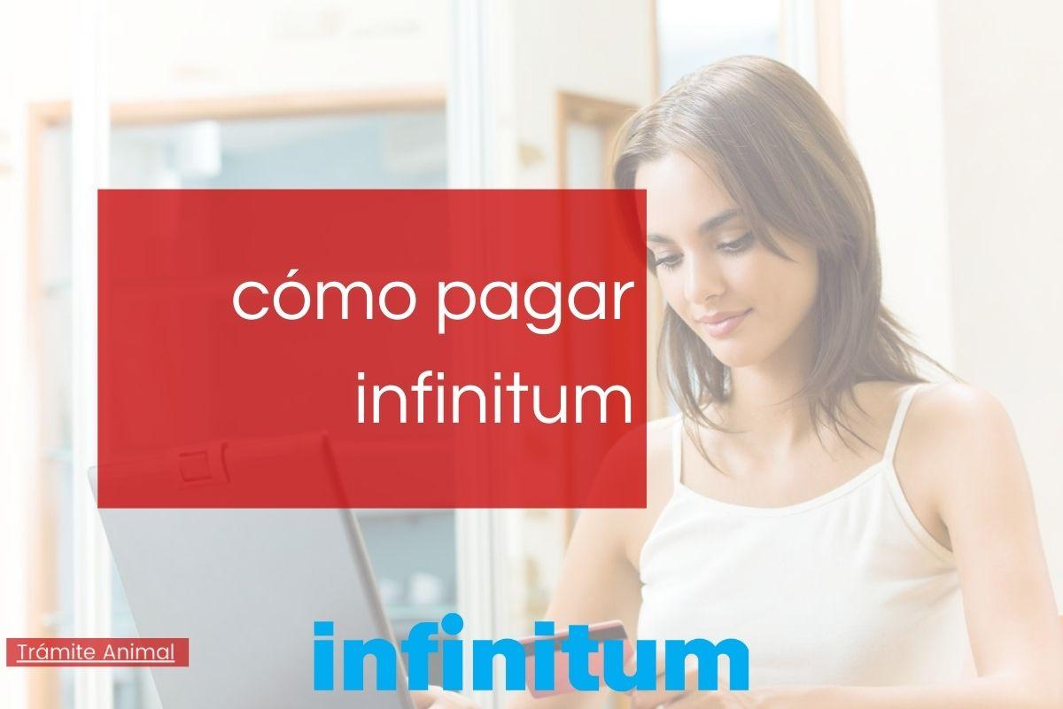 Cómo pagar infinitum en línea