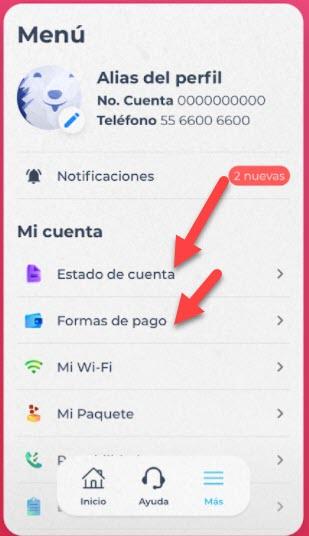 Cómo pagar totalplay desde la app
