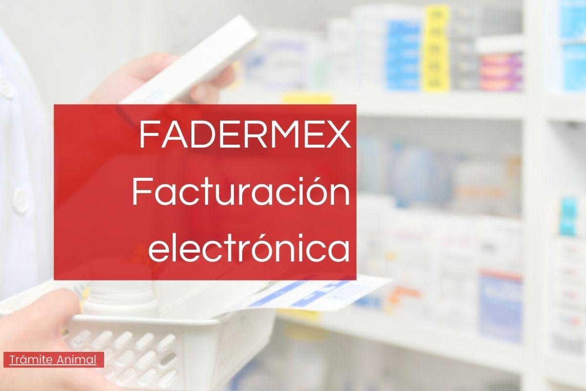 Fadermex facturación electrónica