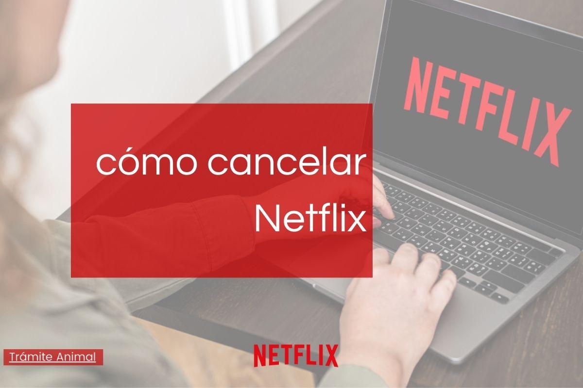 Cómo cancelar Netflix