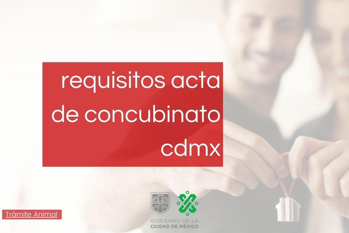 Requisitos para acta de concubinato cdmx