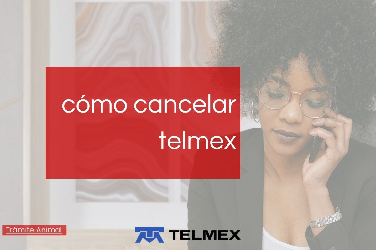 Cómo cancelar telmex por teléfono
