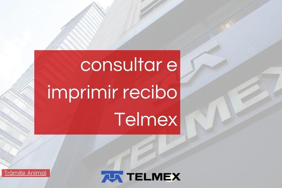 Cómo consultar e imprimir recibo Telmex