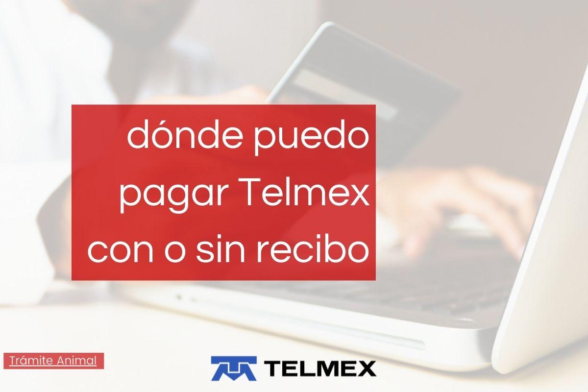 Dónde puedo pagar Telmex